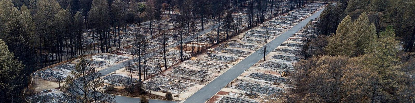 Burned neighborhood